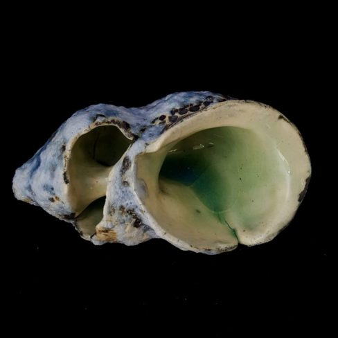 Image of HOS shell 2