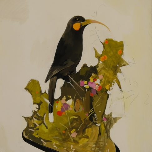 Image of HT The Enlivened Huia