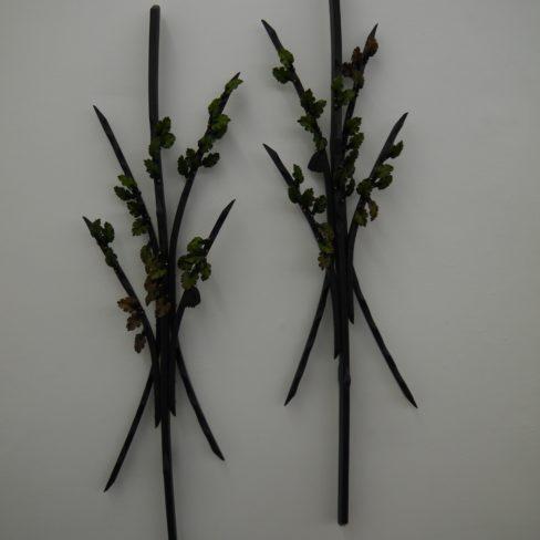 Image of TM Beech single stem (#7 in exhibition)