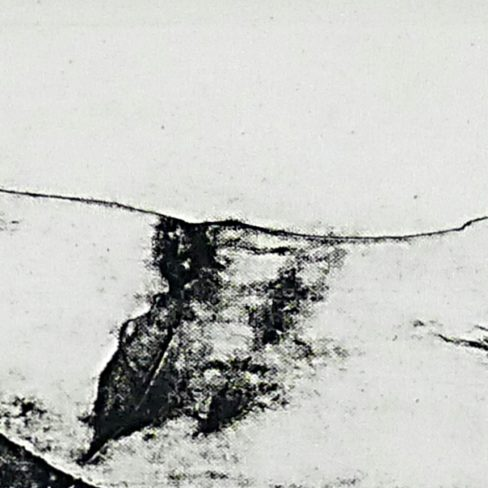 Image of SC Landscape Revisited V